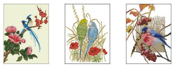 Вышивка крестом птицы, схемы бесплатно